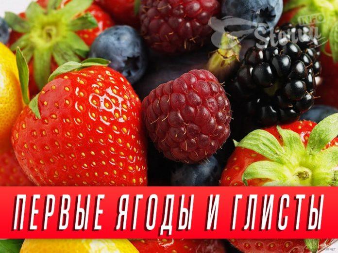 первые-ягоды-и-глисты