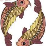 как расстаются рыбы