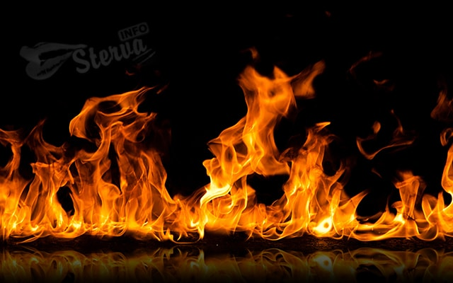 тест энергетический вампир онлайн огонь
