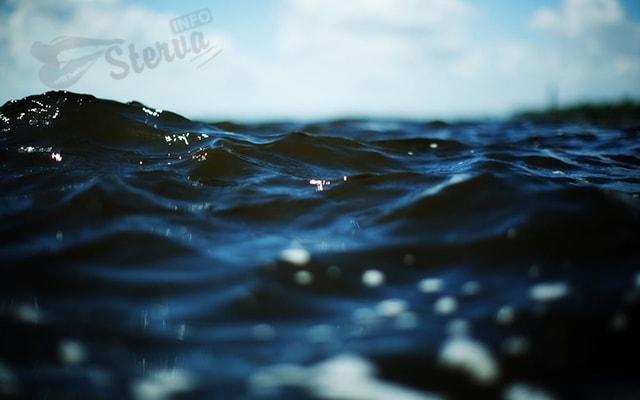 тест энергетический вампир онлайн вода
