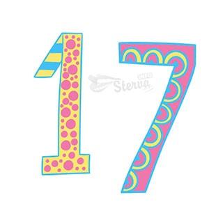 число 17 нумерологии дате рождения