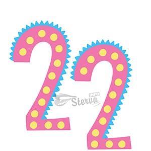 число 22 нумерологии дате рождения