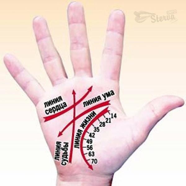 хиромантия линии руки фото расшифровка