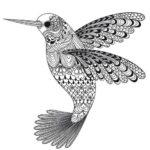 расскраски-антистресс-для-взрослых-птица