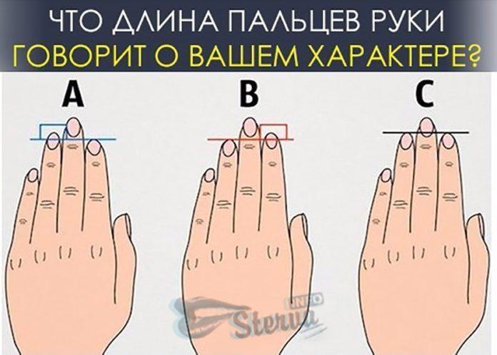 длина пальцев и характер