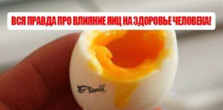 Вся правда про влияние яиц на здоровье человека!