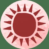 Гороскоп 2018 индейцев майя солнце