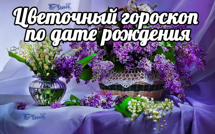 ГОРОСКОП ПО ДАТЕ РОЖДЕНИЯ  gorockopru