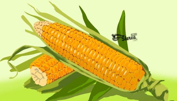 кукурузу нельзя разогревать в микроволновке