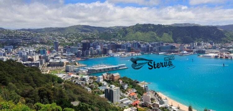 Новая Зеландич