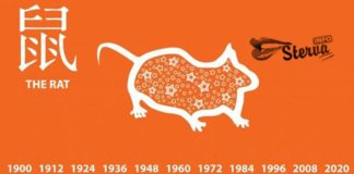 Восточный ГОРОСКОП НА 2018 ГОД ДЛЯ крысы