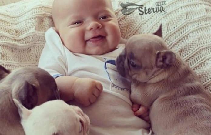 Почему каждый ребенок должен расти с собакой