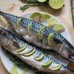 Рецепты на костре на майские праздники скумбрия на мангале-