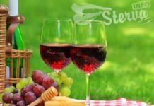 5 вин, которые отлично подойдут для пикника