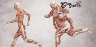 Врач эндокринолог Из-за чего вы не можете похудеть.